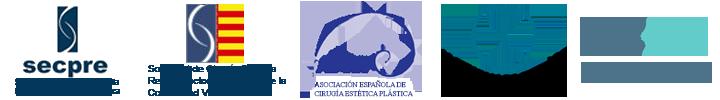 Asociaciones de cirujanos plásticos a las que pertenece el Doctor Terrén